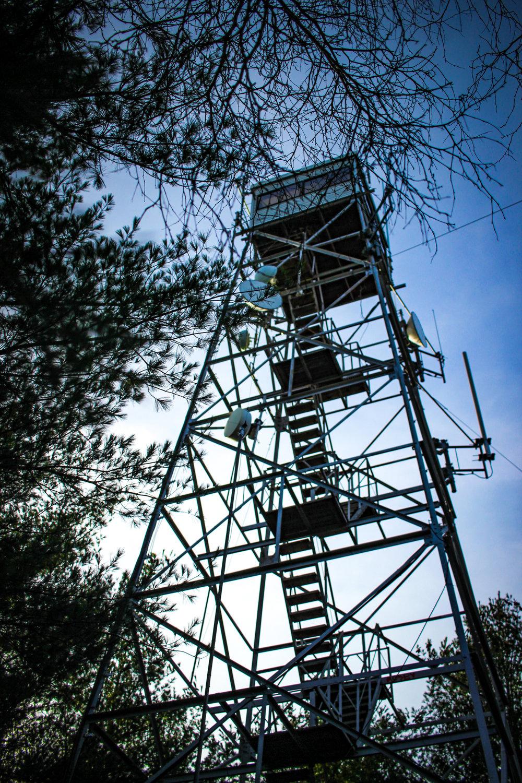 Moose Hill TWG-46.jpg