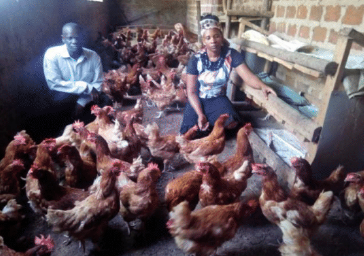 Kiwanuka Jane from Seeta, Uganda, has been rearing over 500 chickens for many years with her Capital for Life loan, enabling her to feed, clothe and educate her children. She is now able to pay the tuition fees for her son to attend university.