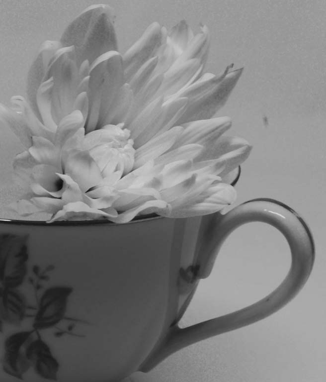 Put a flower in an old tea cup...