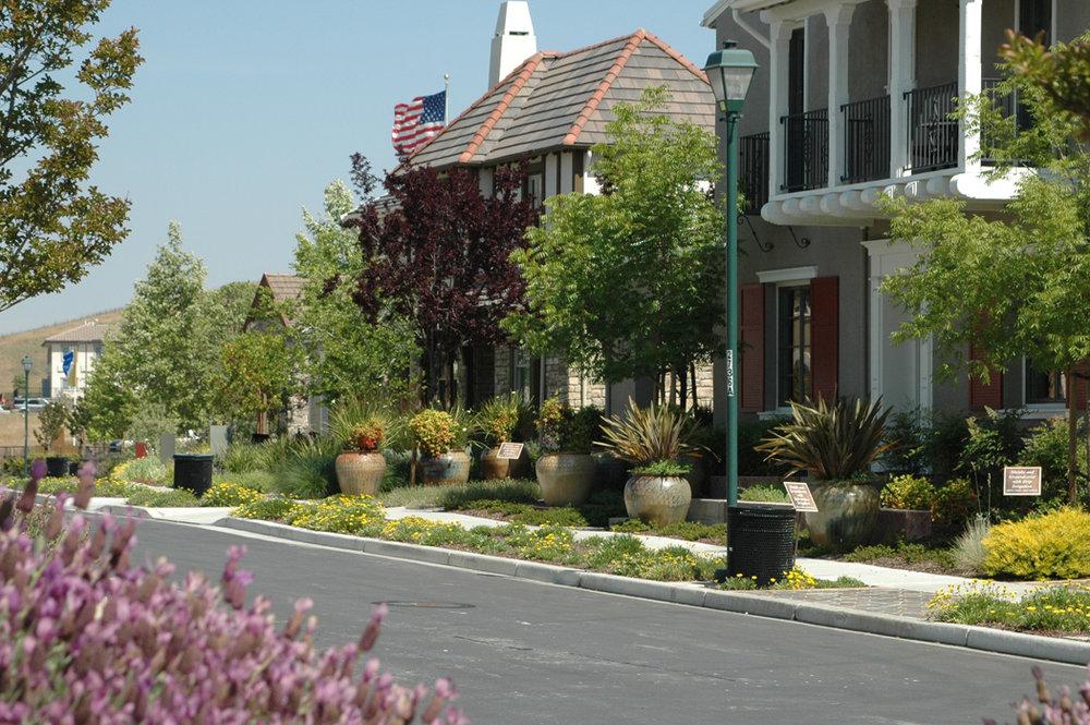 AlamoCrk-Models-street.jpg