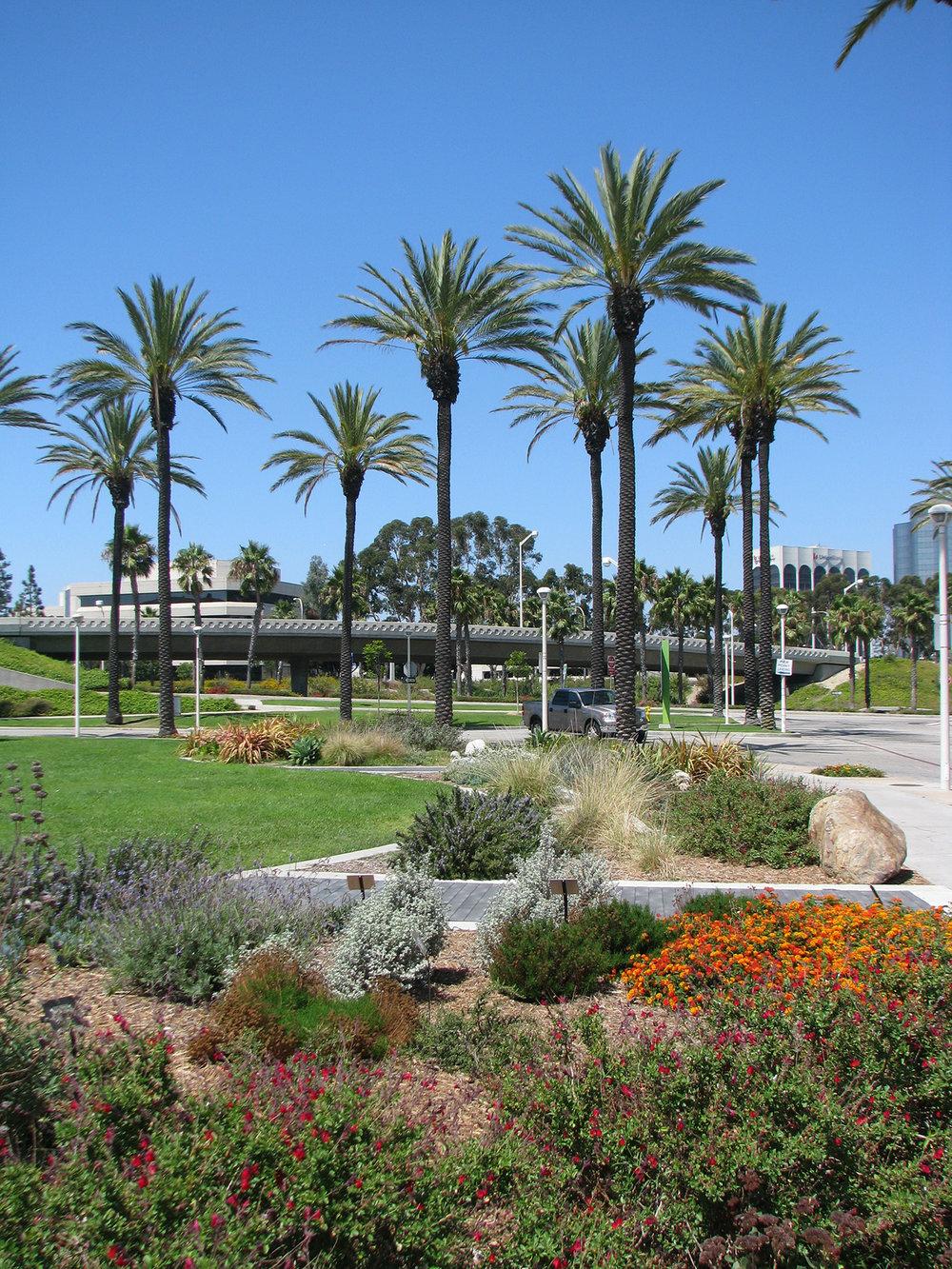 AOP-garden across view.jpg