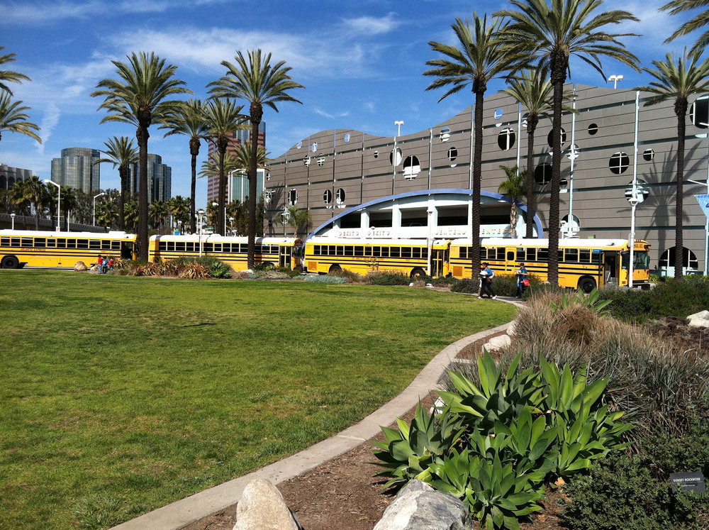 AOP-garden buses.jpg