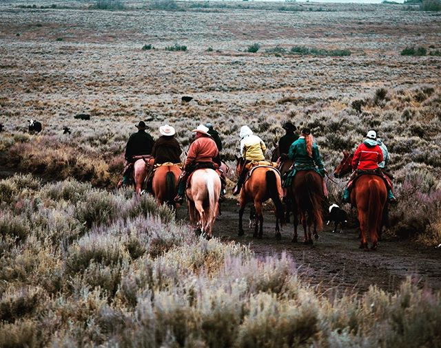 On the Cattle Trail