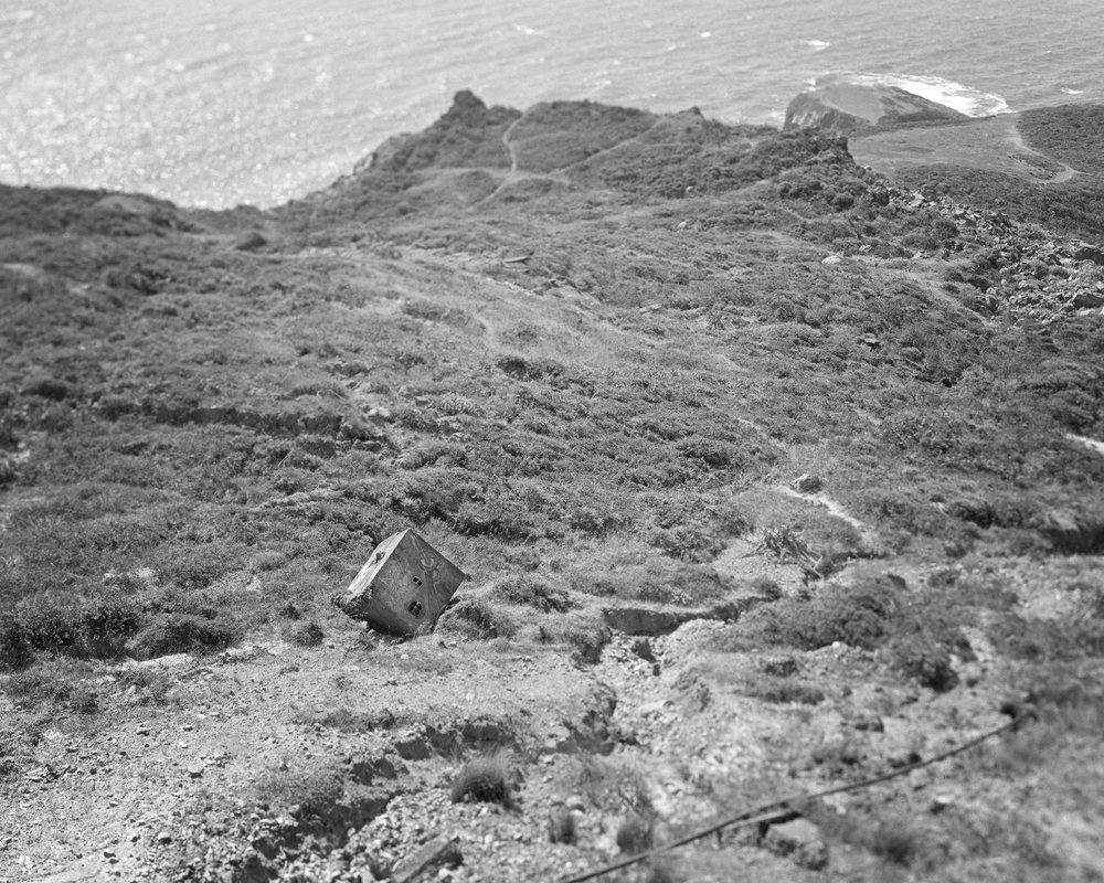 2018-05-29 Marin Headlands Fallen 2-2.jpg