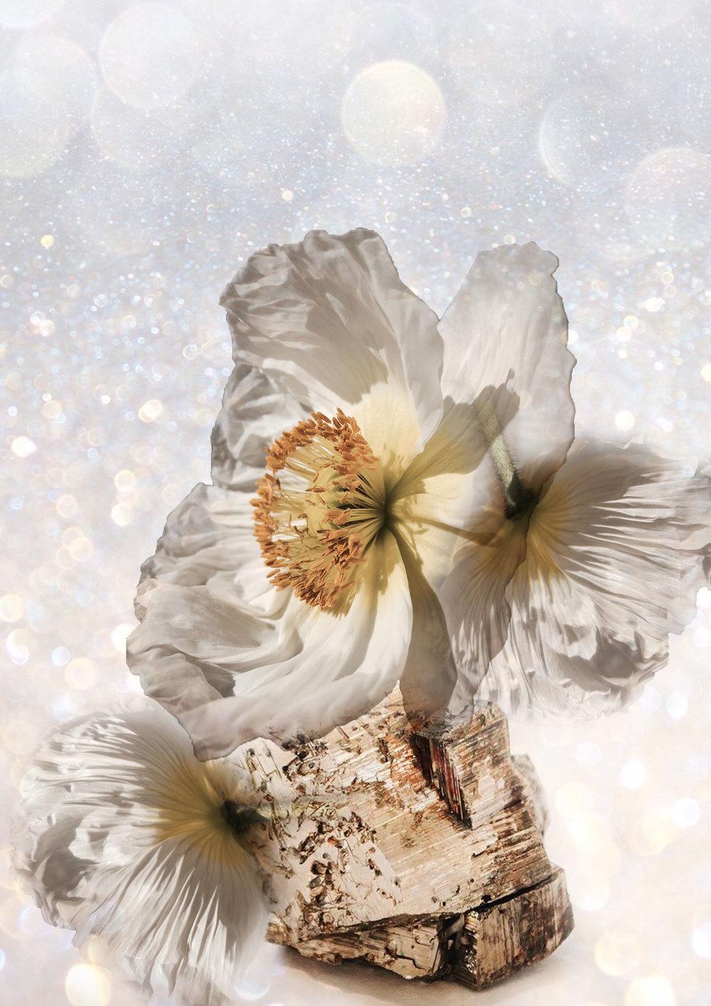 Fleur & Threads Chakra Moodboard
