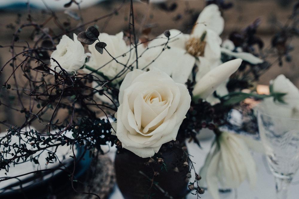 TheWildeRomantic_ReneeEdwardsPhotography-125.jpg