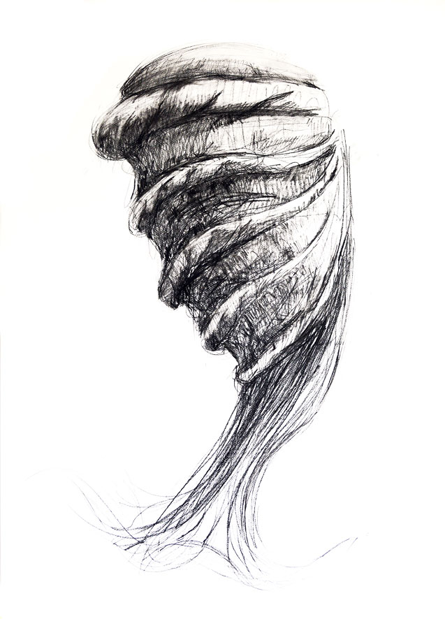 """Macrospira"" 100x70cm, choarcoal on paper"