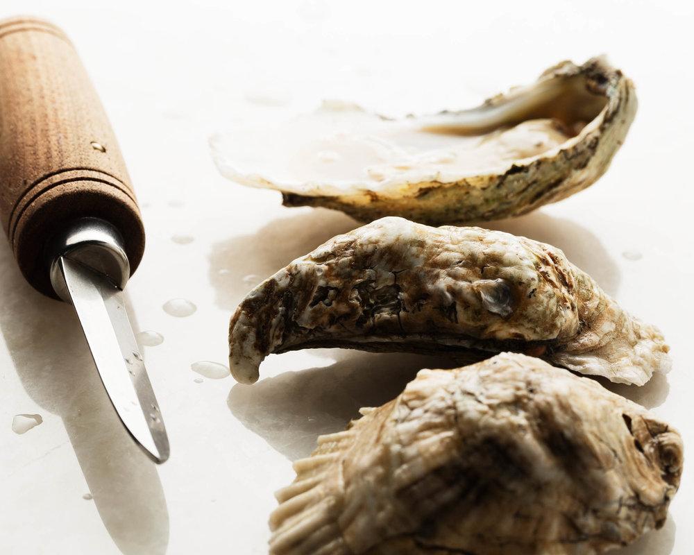 oysters-2500-gallery-3.jpg