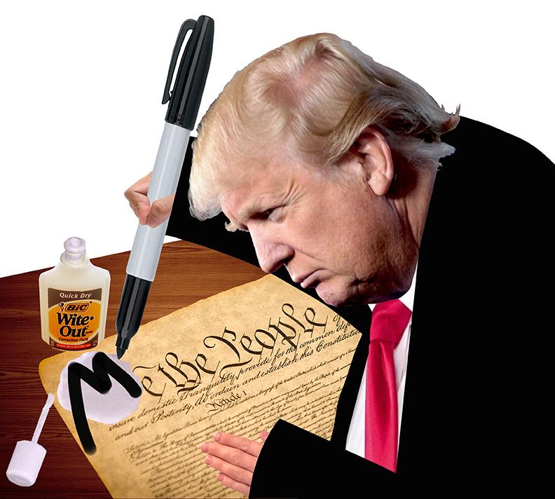 Trump MeConstitution