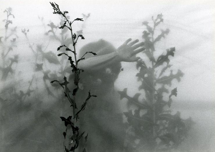 Freeman- 1992