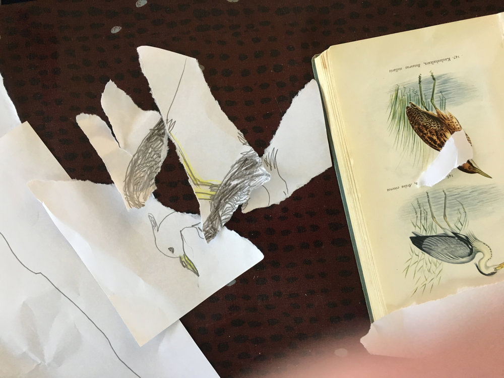 Piirretään suosikkilintuja - taiteilija inspiroitui myös tekemään työstään palapelin