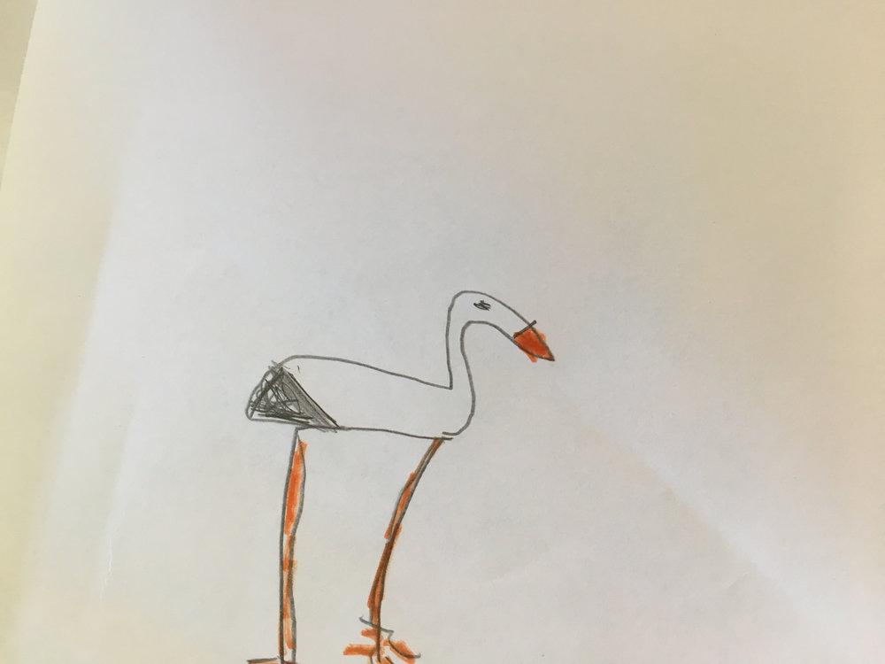 Minimalistinen lintu