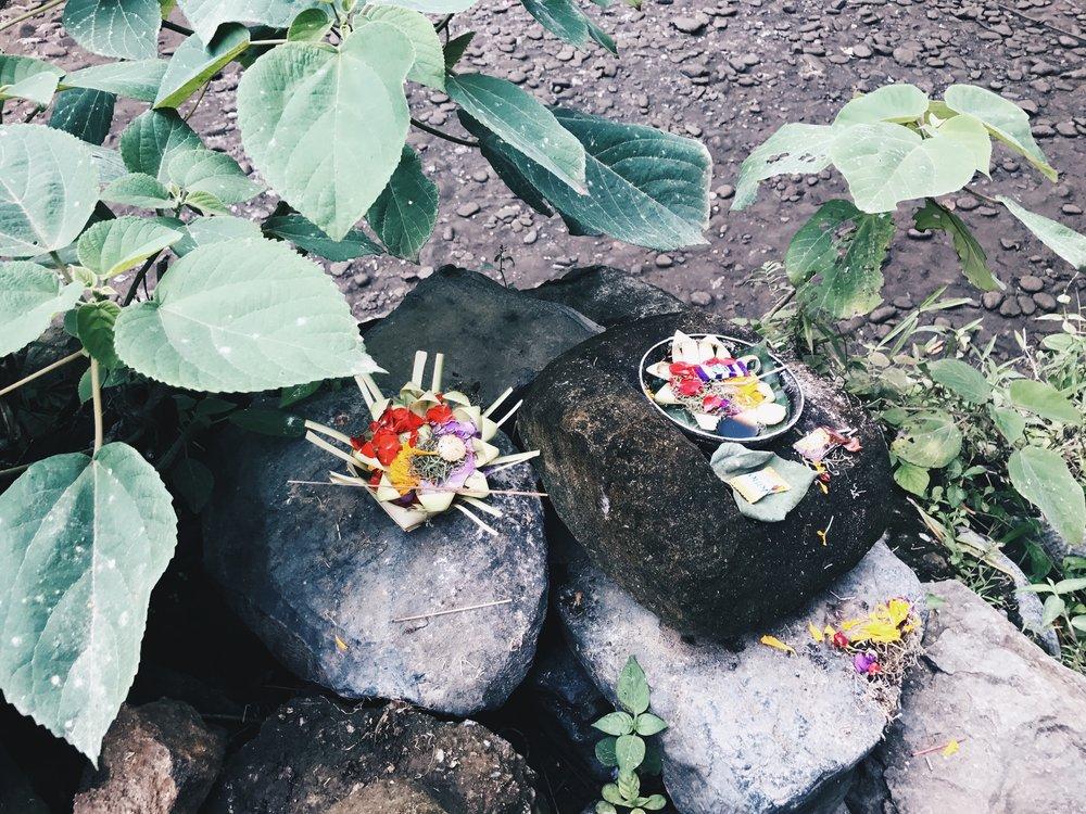 Bali21.jpg