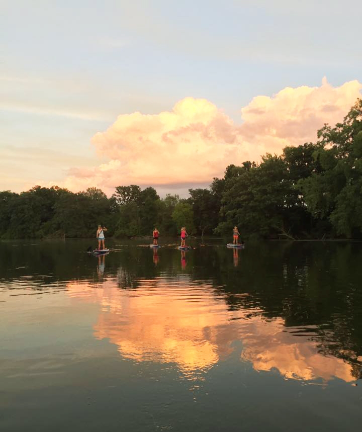 Photo of four people in the distance standing on paddleboards and holding paddles. The sunset and trees are reflected in the water around them.