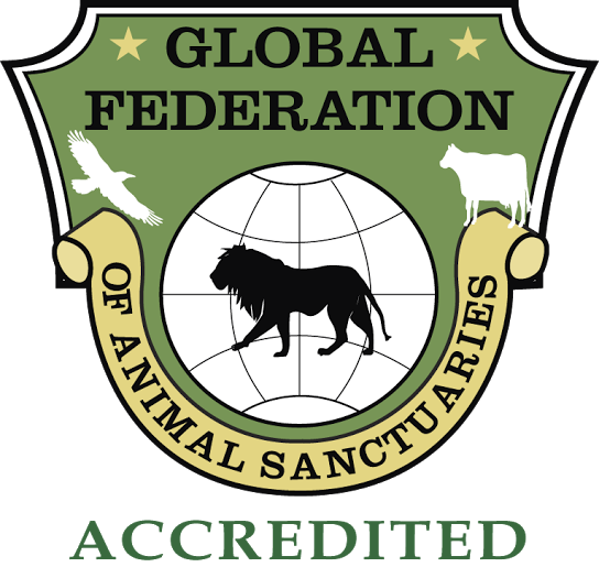 gfasaccredited.png