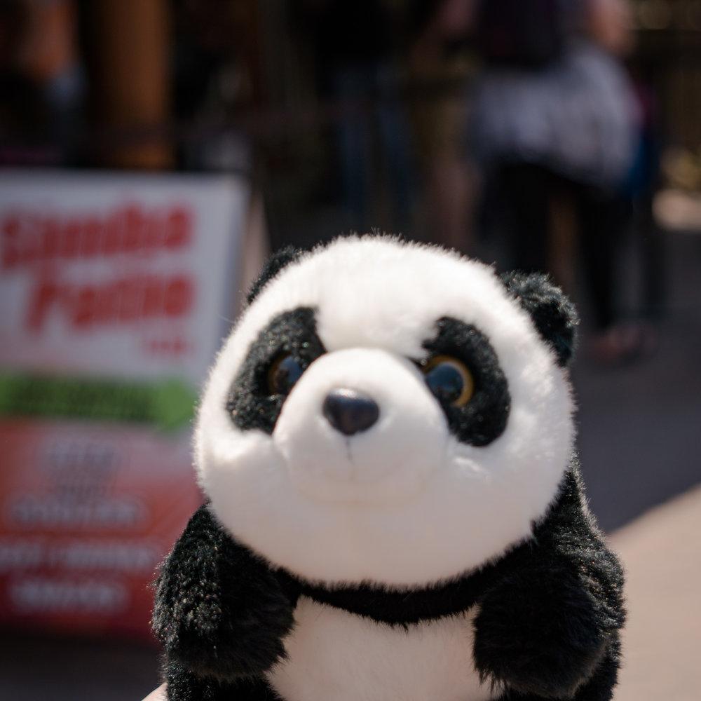 20 penny panda.jpg