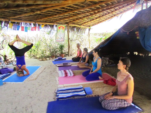 Trainings - Want to take some courses? Here you can find information on our Yoga Teacher Trainings, Ayurveda, and Meditation trainings.