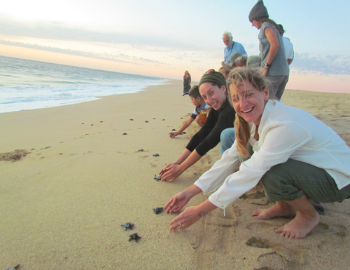 Activities - Whether you're at Clarananda or you spend some time off the property in or near Todos Santos, BSC offers a wide variety of activities, and there is something for everyone! Find more information about possible activities to partake in here.