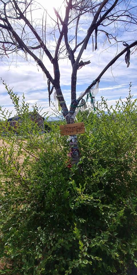 2017-07-01 hillside cemetery.jpg