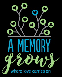 A Memory Grows'    mission is to provide a space of healing and peace for parents who are grieving the death of their child. By bringing together those who have experienced a similar loss in a retreat setting we honor and celebrate our children while making connections with others who truly understand our journey. A memory grows where love carries on.