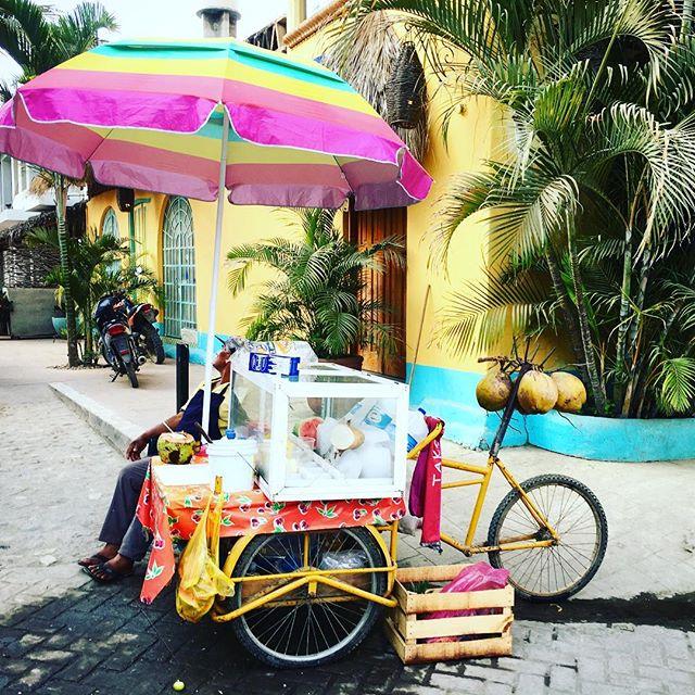 A coco a day ________. #fillintheblank #sayulitavibes #sayulitalove #sayulitalife #casanicoya