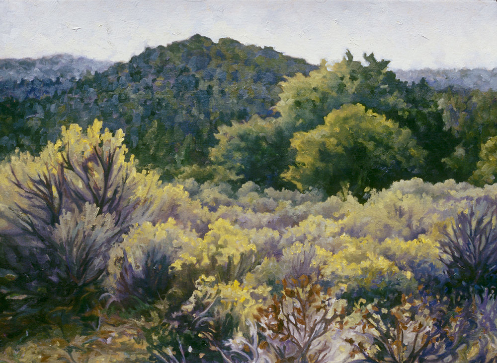 Copy of MORNING HIGH DESERT
