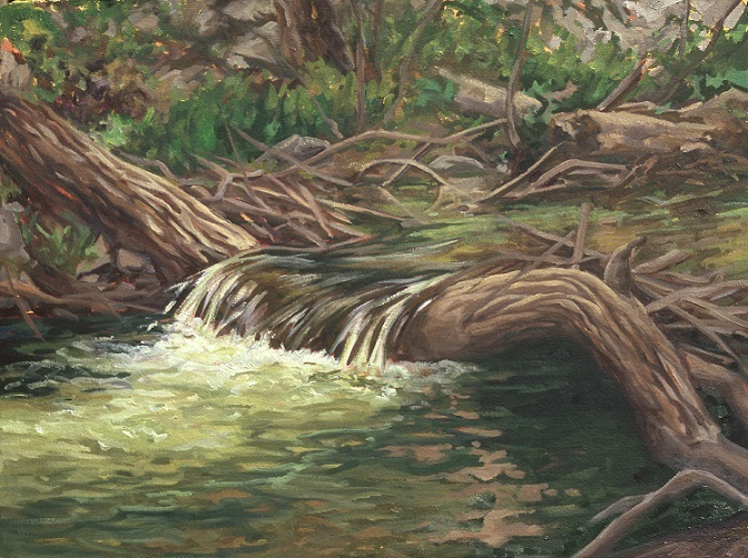 Copy of RIVER IN THE MOUNTAINS (FALLEN TREE)