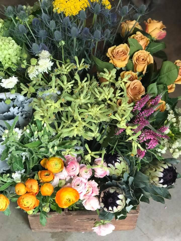 fresh blooms.jpg