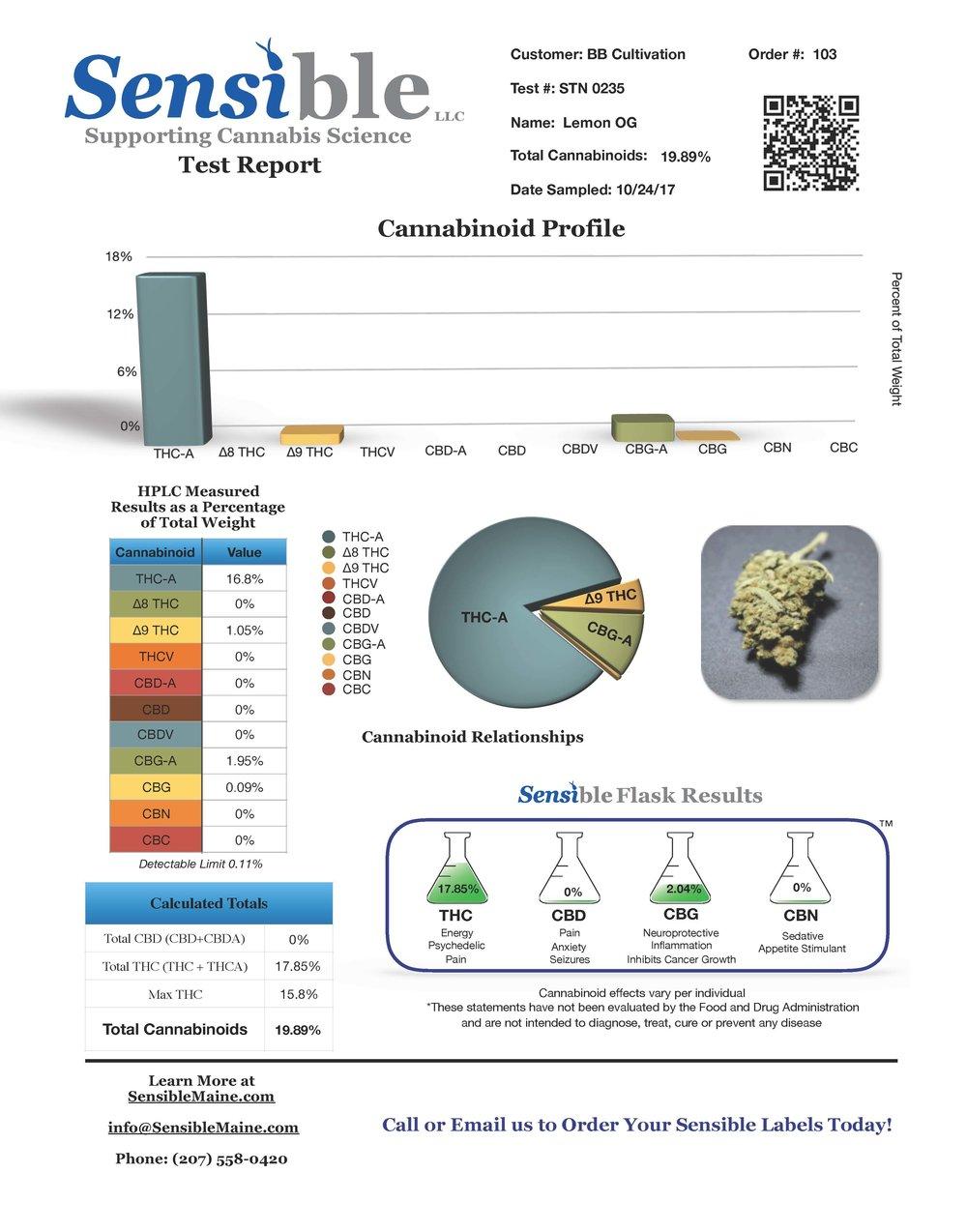 Test Report stn0235.jpg