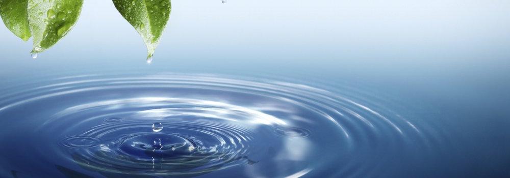 water-life-crop.jpg