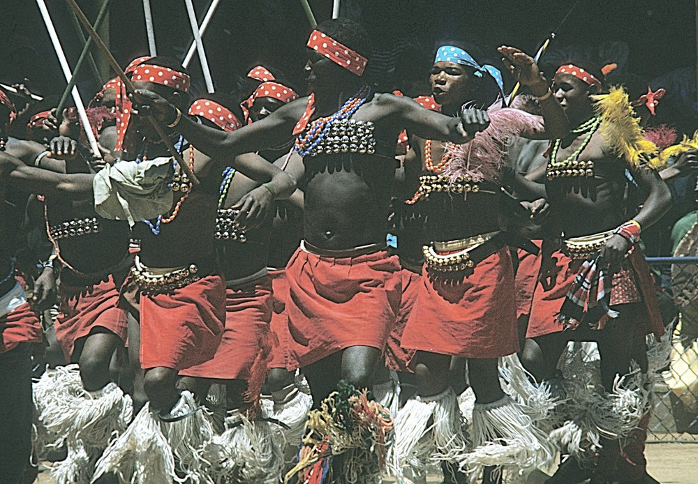 Zulus dancing at the local Gold Mine. Click  HERE  to see The Mine Dance page.