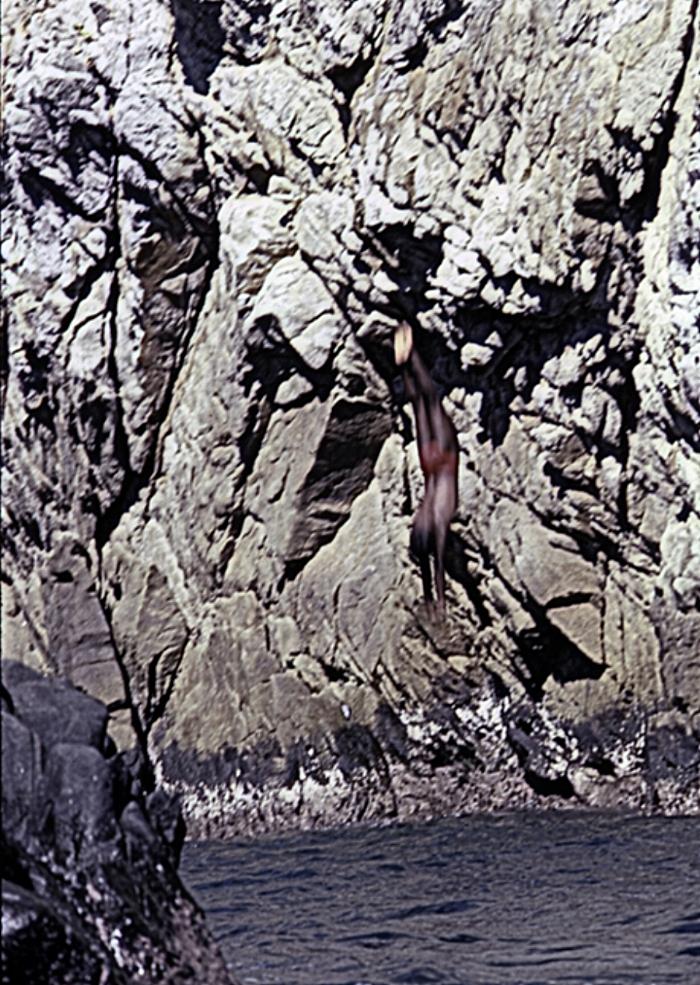 Cliff Diver in Acapulco Bay