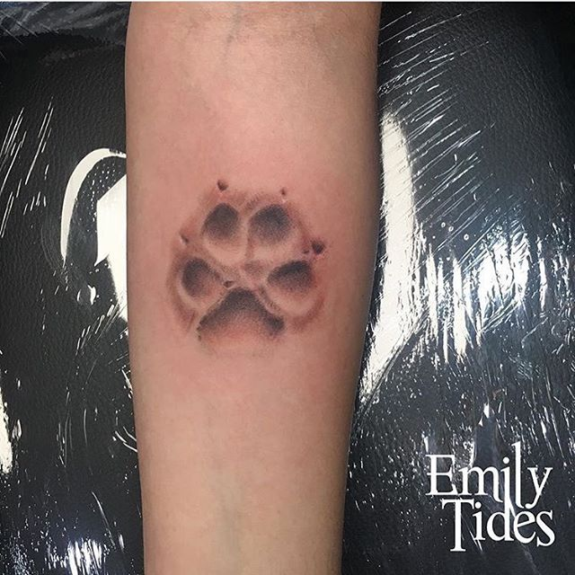 Throwback to this beautiful little memorial for a cute little dog named Cozo ❤️ . . . . #emilytides #emilytidesart #dog #dogtattoo #dogpawtattoo #realistictattoo #colortattoo #greywash #greywashtattoo #memorialtattoo
