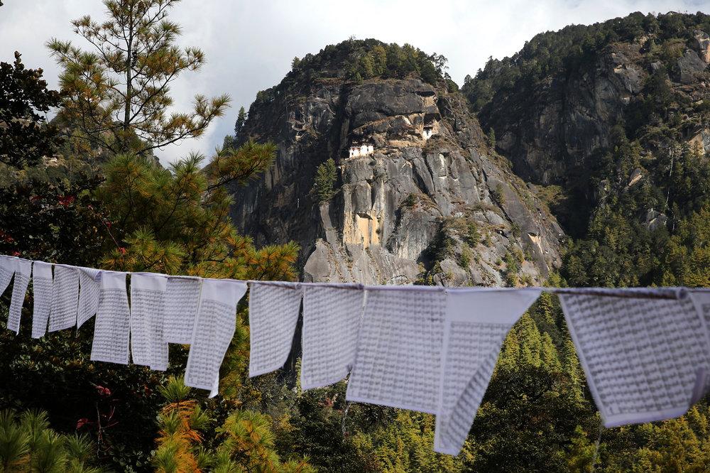 Bhutan-2016- C26O9819.jpg