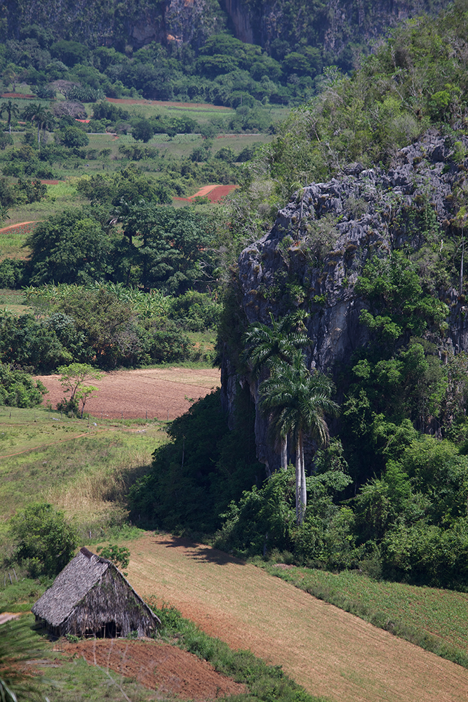 Cuba-Havana-5-14- C26O2441.jpg
