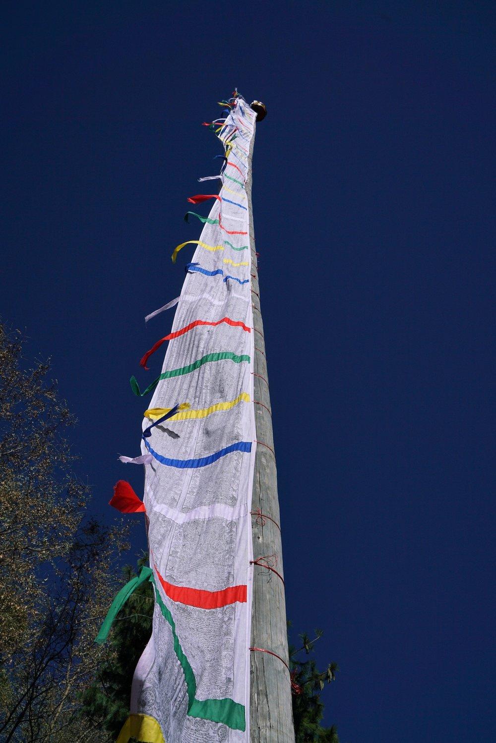 Bhutan-11-17-16- DSC03787.jpg