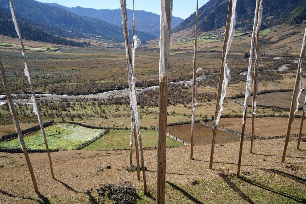 Bhutan-11-17-16- DSC03927.jpg