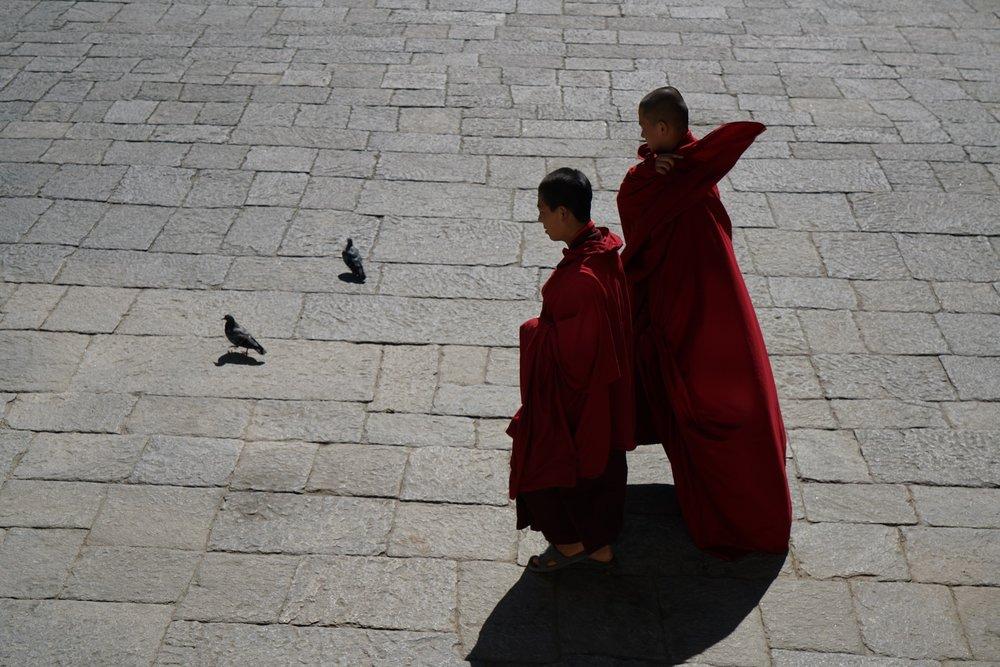 Bhutan-11-17-16a- DSC04394.jpg