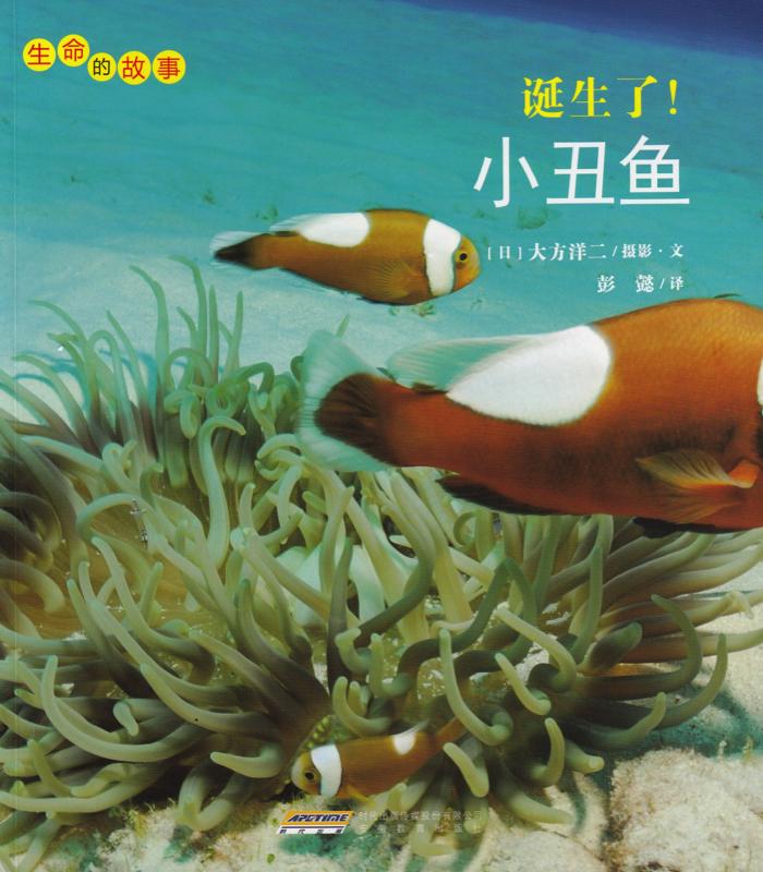 小丑鱼.jpg