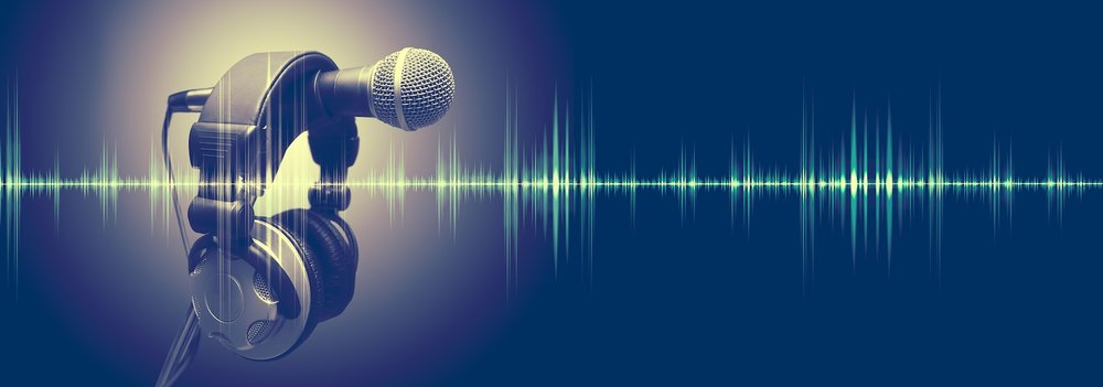 The Value of Voice -