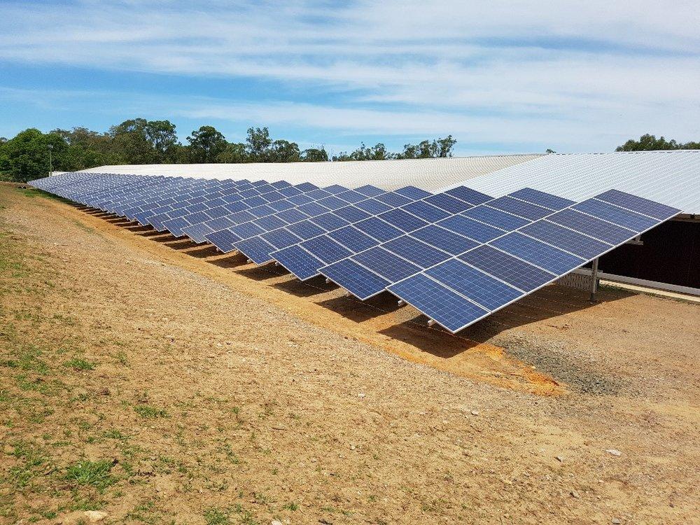 Single Axis Solar Tracker Chicken Farm.jpg