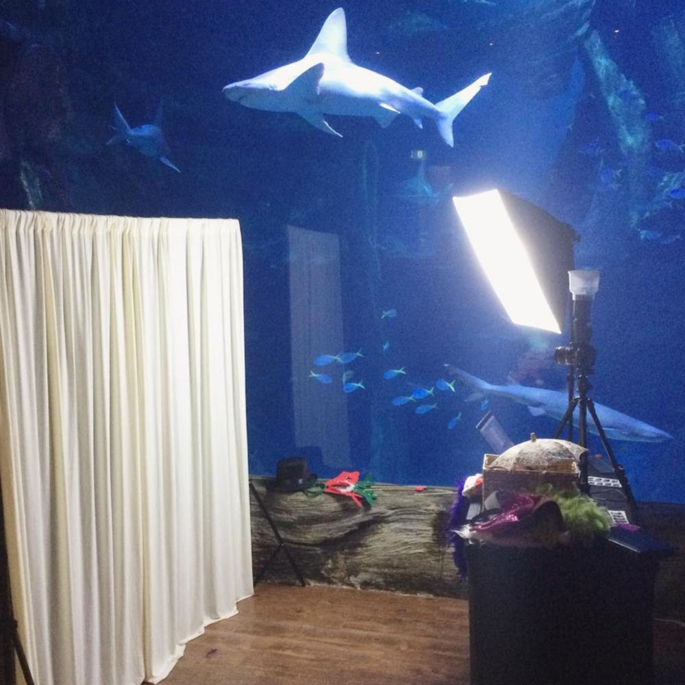 Studio Photo Booth Setup