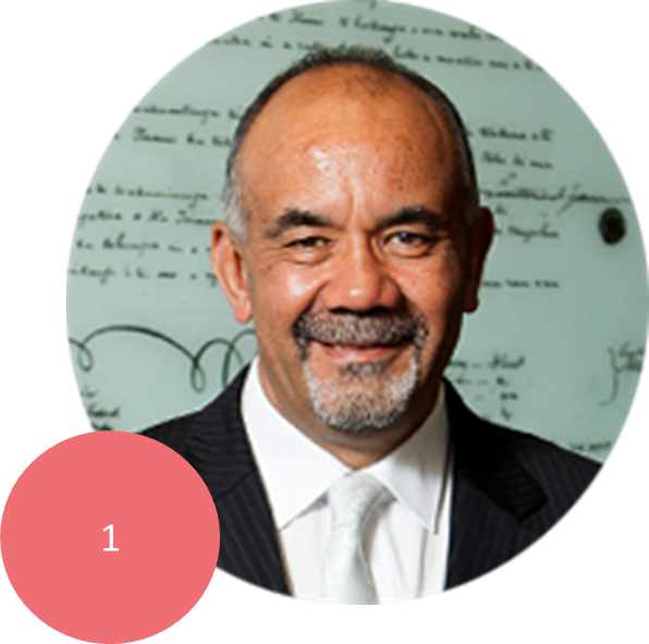 TE URUROA FLAVELL       Co-Leader of the Maori Party. MP for Waiariki since 2005. Ngati Rangiwewehi and Ngapuhi. Became Maori Party co-leader in 2013. Minister for Maori Development, Minister for Whanau Ora and Associate MInister for Economic Development.