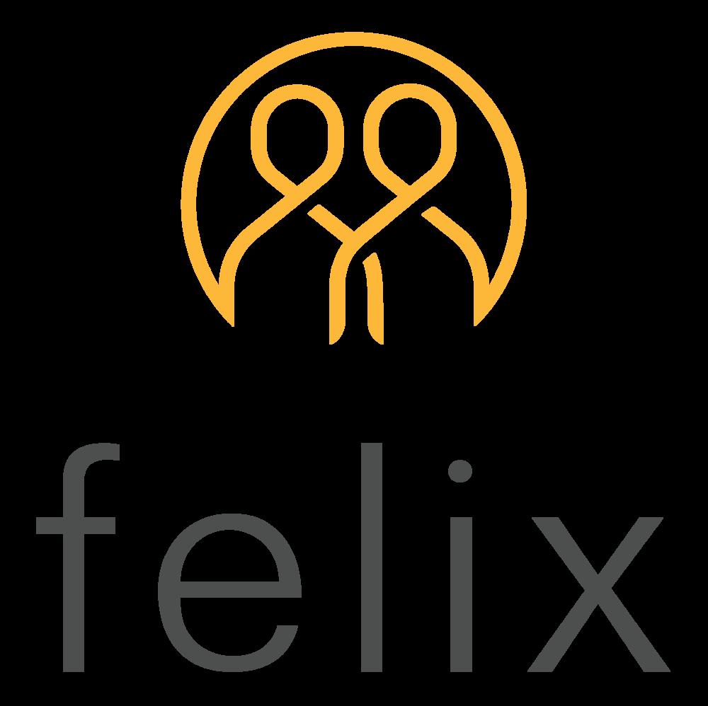 Felix Insurance