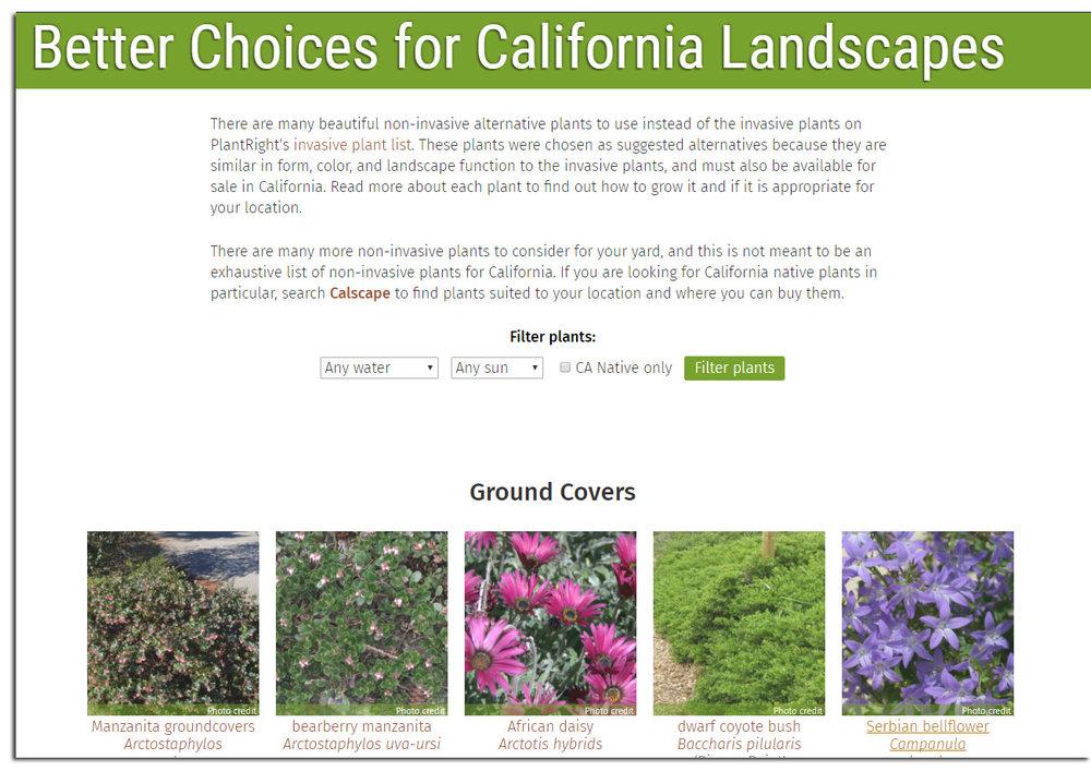 Better-plants-page.jpg