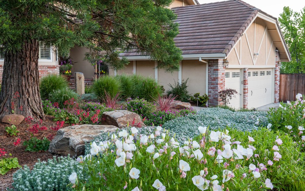 Fitch CLCA award garden-front.jpg