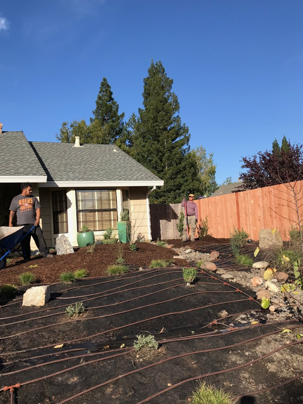 In-line irrigation by APLD CA sponsor   Hunter   and decorative containers by APLD CA sponsor   Green Acres Nursery & Supply