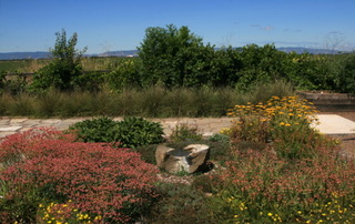 A bird shower, set in a pollinator garden, with a backdrop of big sky and the Vaca hills. Photo courtesy of Jennifer Jewell.