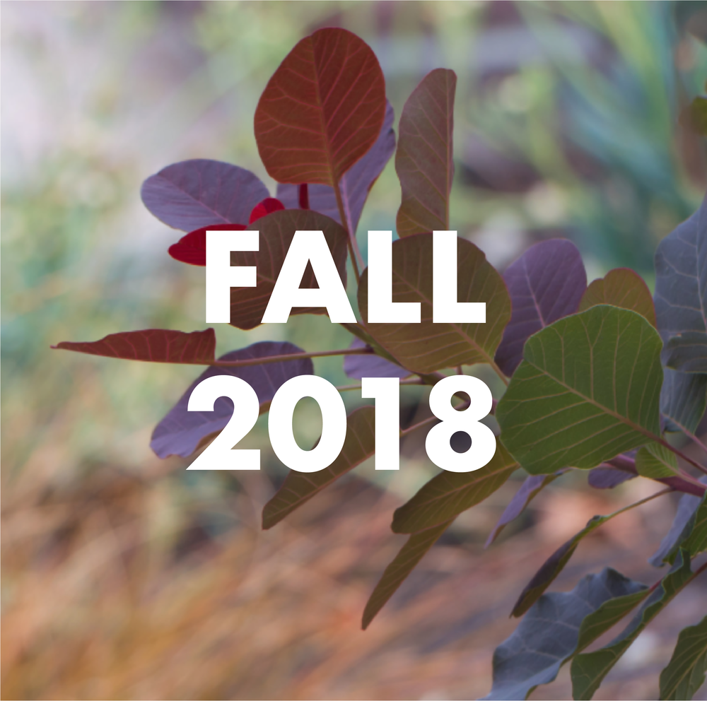 FALL 2018.png