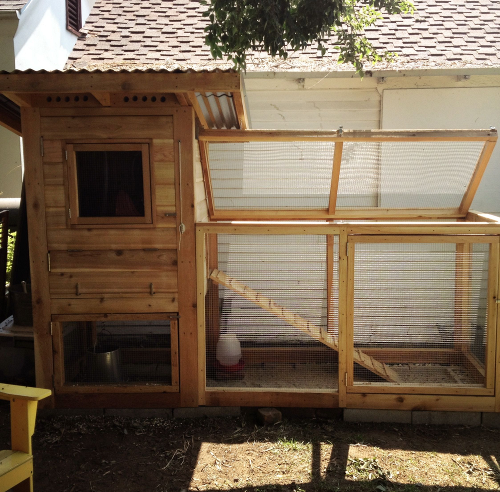 A compact coop and run designed for a small urban backyard.